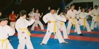 suncokret-karate-1